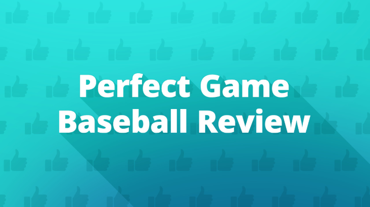 Perfect Game Baseball Review